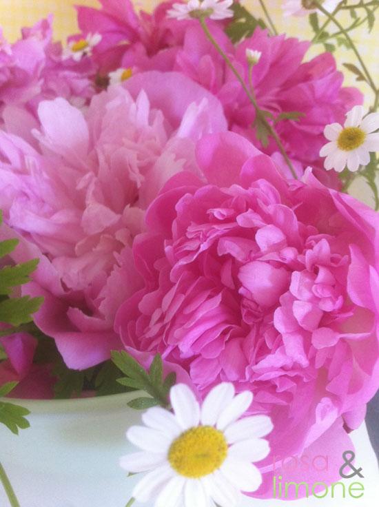 Blumen-rosa&limone