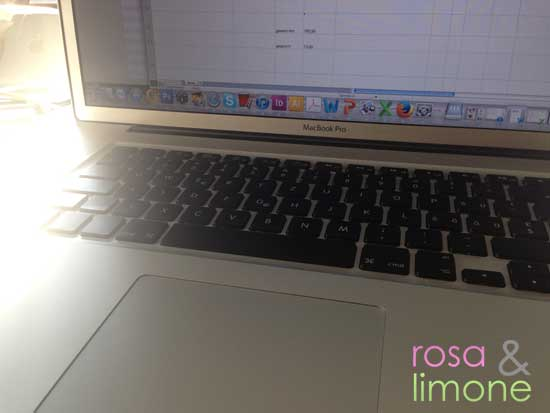 Computer-rosa&limone