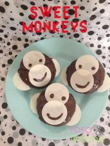 Sweet-monkeys-2-rosa&limone