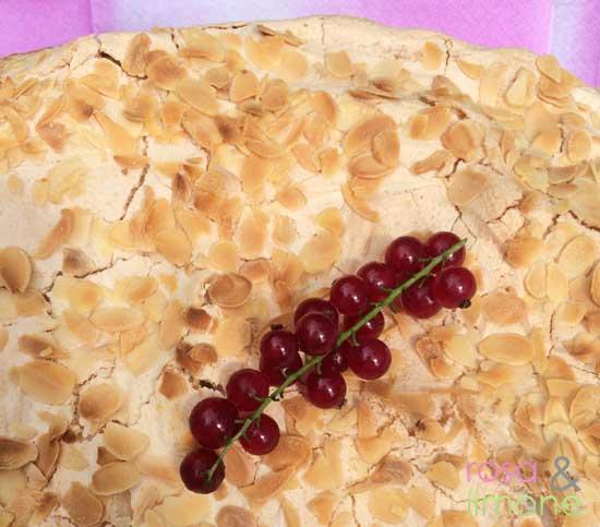 Träubchen-Schäumchen-Torte-Start