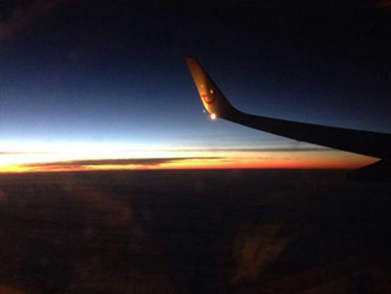 Flug-Mallorca-rosaundlimone