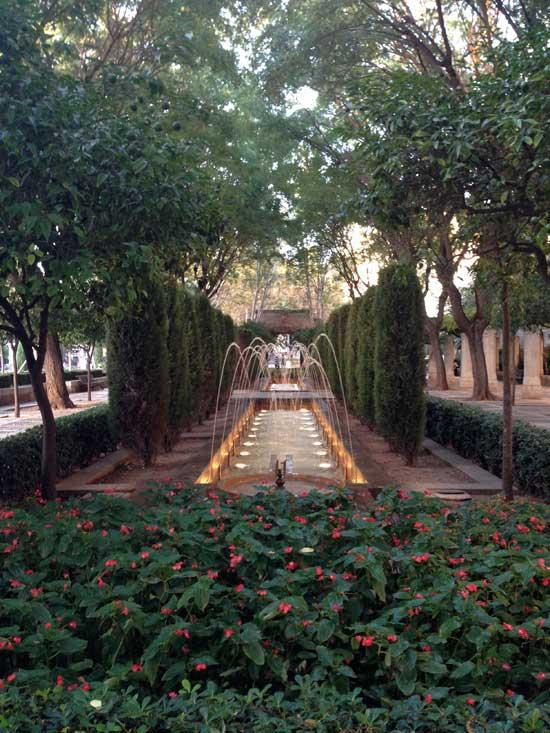 Springbrunnen-Mallorca-rosaundlimone