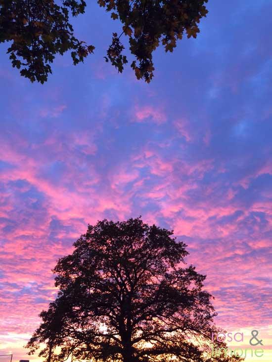Abendhimmel-rosaundlimone
