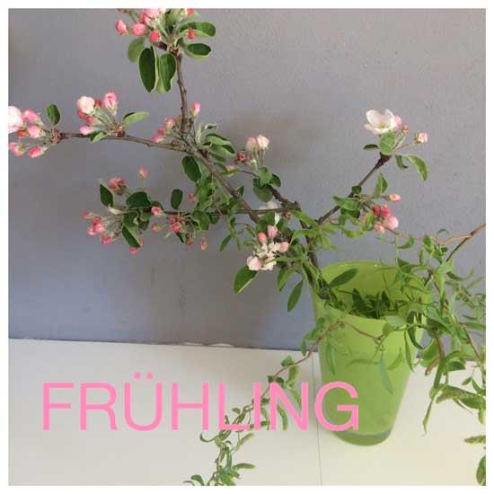 Fruehling-rosa