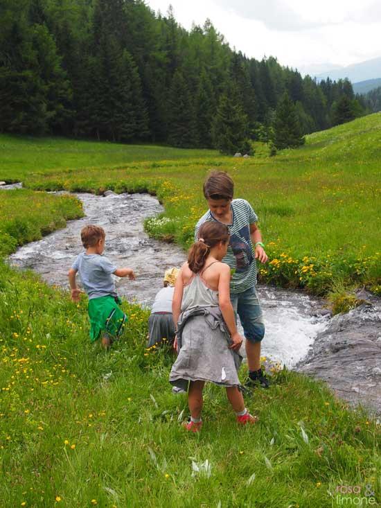 Altfasstal-Fluss-Suedtirol