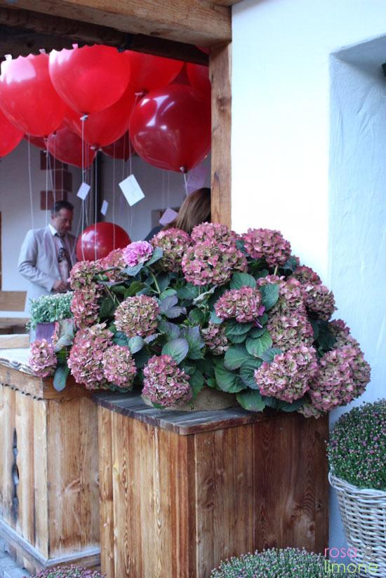 Achensee-Seealm-Hochzeit-rosaundlimone