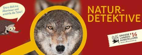 Eintrittskarten-Naturdetektive