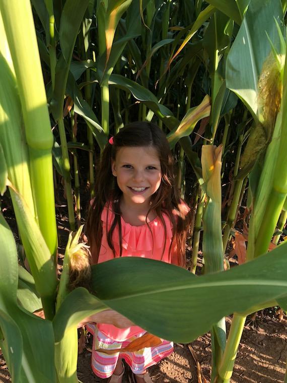 Lina im Maisfeld Kindermode 3