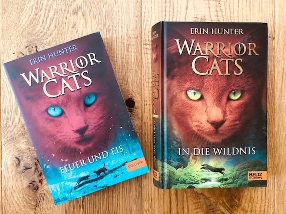 Jugendbuch Tipps Mädchen Sommerferien Warrior Cats